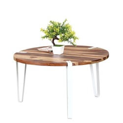 Modern Zebra Solid Wood & Iron Round Accent Coffee Table