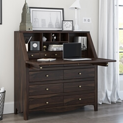 Philadelphia Solid Wood Drop Front Secretary Desk
